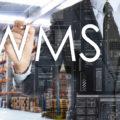 WMS(倉庫管理システム)の導入で解決できる問題とは(※2018年8月追記)